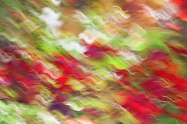 Horizontal Abstract Photograph - Abstract Colorful Wave Pattern by Nacivet