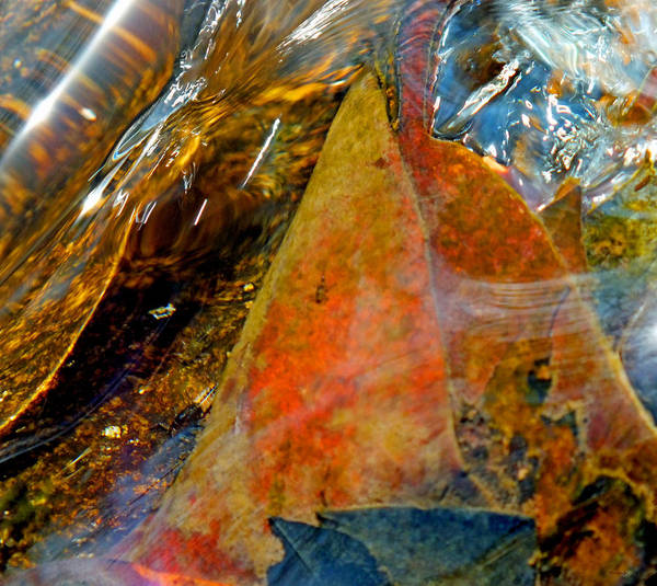 Photograph - Abstract Creek Water 5 by Duane McCullough