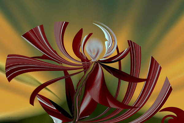 Abstract - Flower Art Print