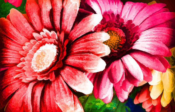 Photograph - Abstract Flowers by Donna Proctor