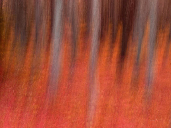 Conceptual Mixed Media - Abstract Forest 1 by Leland D Howard