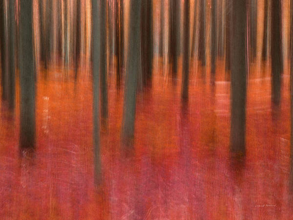 Conceptual Mixed Media - Abstract Forest 2 by Leland D Howard