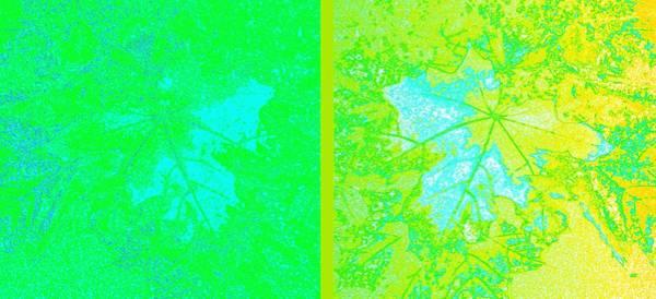 Wall Art - Digital Art - Abstract Fusion 249 by Will Borden