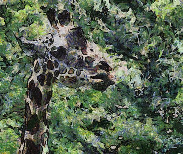 Photograph - Abstract Giraffe by Alice Gipson