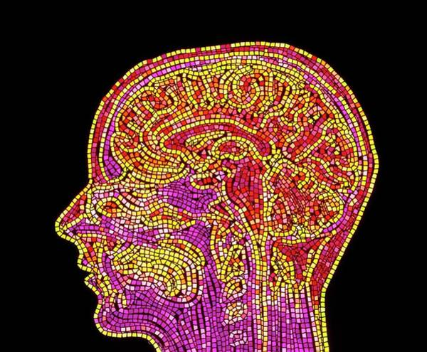 Mri Photograph - Abstract Mosaic Mri Scan Of The Human Brain by Mehau Kulyk/science Photo Library