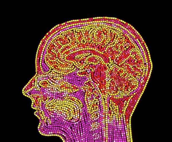 Mri Scan Wall Art - Photograph - Abstract Mosaic Mri Scan Of The Human Brain by Mehau Kulyk/science Photo Library