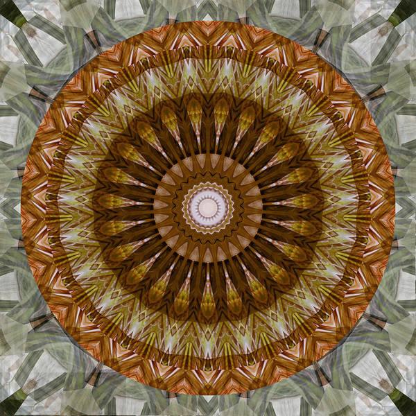 Digital Art - Mandala 2 - 075 by rd Erickson
