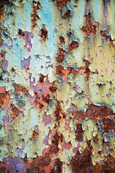 Photograph - Abstract Peeling Paint by Christina Rollo