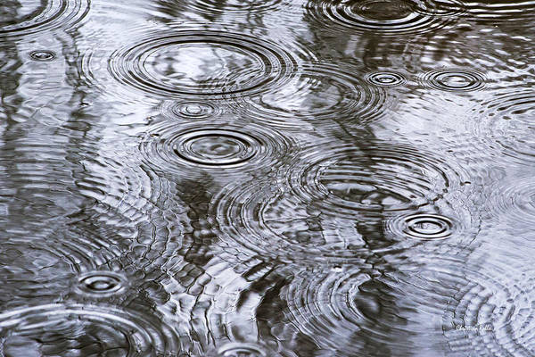Photograph - Abstract Raindrops by Christina Rollo