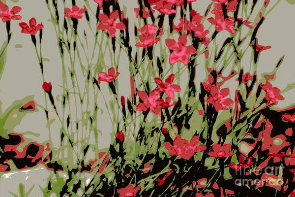 Posterize Photograph - Abstract Red Flowers by Kenny Glotfelty