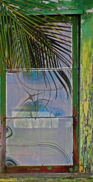 Photograph - Abstract Reflection by Jani Freimann