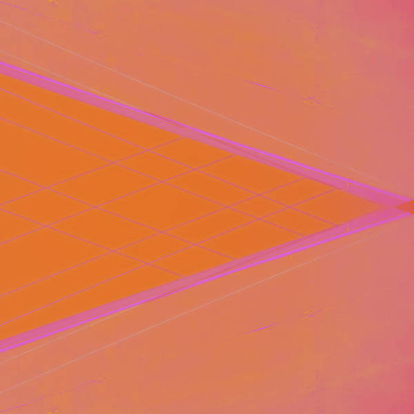 Striking Wall Art - Photograph - Abstraction In Pink Number 3 by Carol Leigh