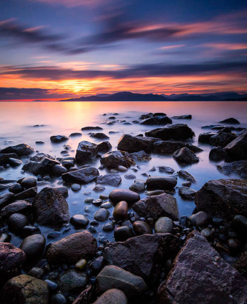 Photograph - Acadia Beach by Alexis Birkill