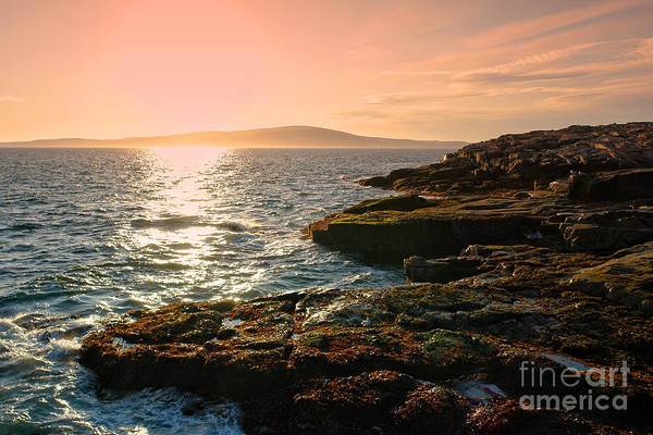 Acadia National Park Wall Art - Photograph - Acadia National Park by Olivier Le Queinec