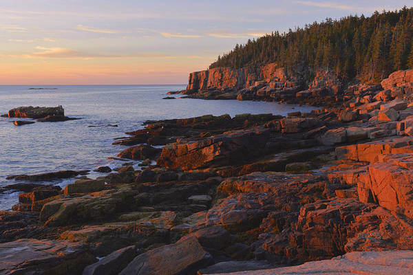 Wall Art - Photograph - Acadia Sunrsie by Stephen  Vecchiotti