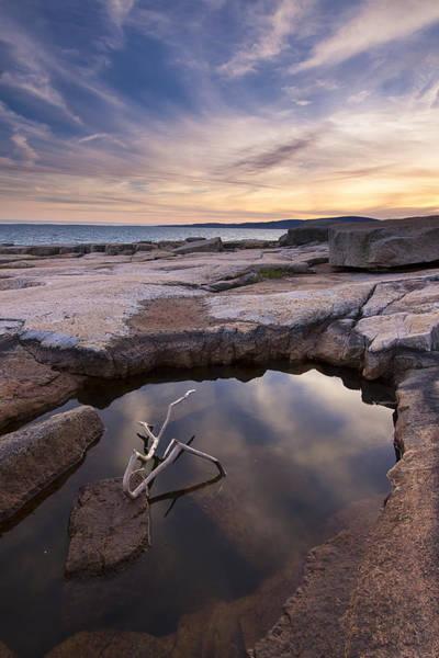 Wall Art - Photograph - Acadia Tidal Pools by Patrick Downey