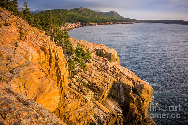 Photograph - Acadian Mountains In Summer 2 by Susan Cole Kelly