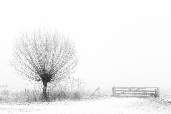 Sketch Photograph - Access To Fog by Greetje Van Son