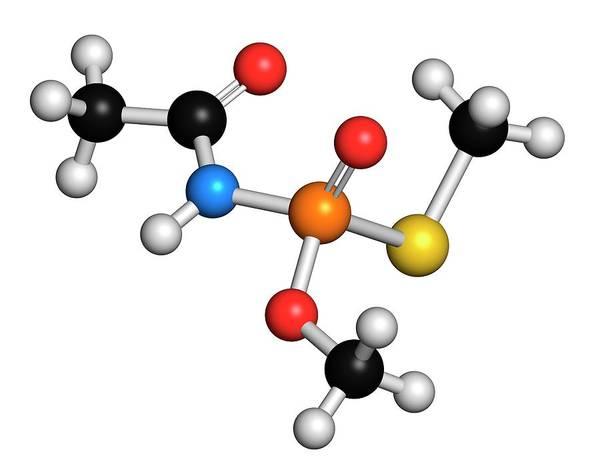 Vegetal Photograph - Acephate Molecule by Molekuul/science Photo Library