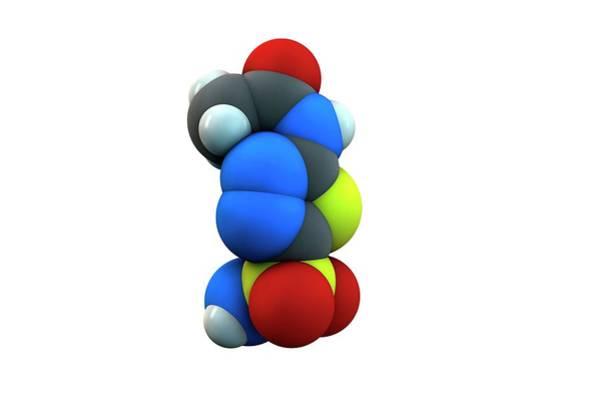 Molecular Wall Art - Photograph - Acetazolamide Diuretic Drug Molecule by Ella Maru Studio / Science Photo Library