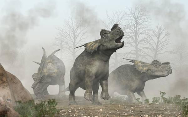 Photograph - Achelousauruses by Daniel Eskridge