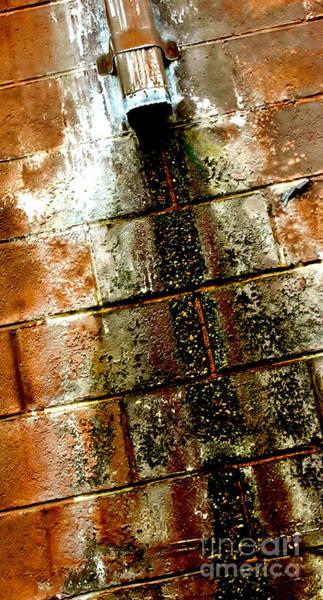 Darkside Photograph - Acid Rain by Christiane Hellner-OBrien