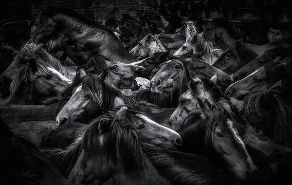 Crowds Wall Art - Photograph - Acorralados by Alfonso Maseda Varela