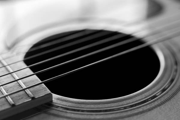 Photograph - Acoustic Guitar Strings Black And White by Terry DeLuco