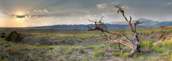 Photograph - Across A Great Wilderness by OLena Art - Lena Owens