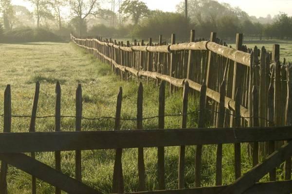 Photograph - Across From Yarnton by Joseph Yarbrough