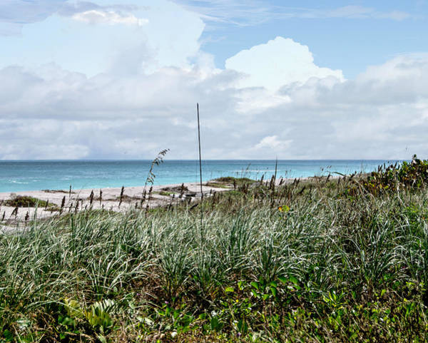 Photograph - Across The Dunes At Hobe Sound by Judy Hall-Folde