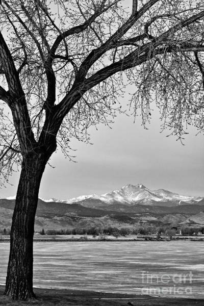Photograph - Across The Lake In Black And White by James BO Insogna