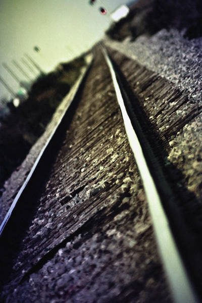 Wall Art - Photograph - Across The Tracks by Trish Mistric
