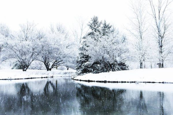 Photograph - Ada Park Pond With Snow by Evie Carrier