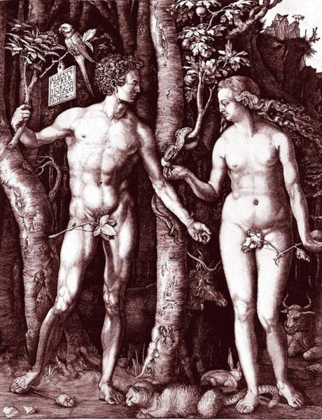 Adam And Eve Wall Art - Photograph - Adam And Eve by Collection Abecasis/science Photo Library