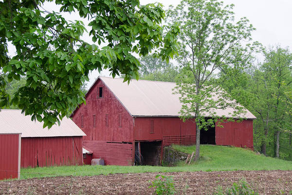 Photograph - Adams County Barn  7d02918 by Guy Whiteley