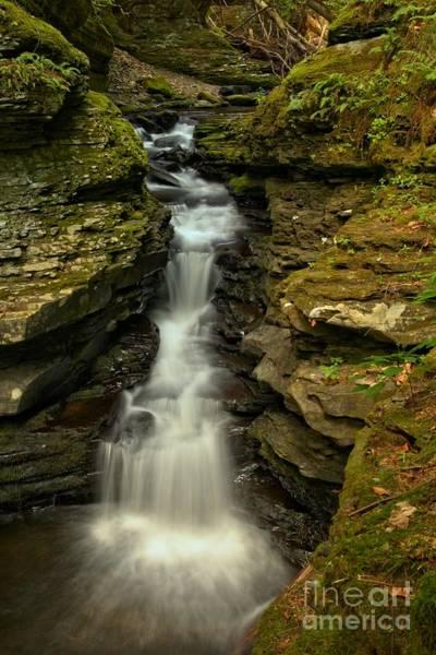 Photograph - Adams Creek Beauty by Adam Jewell
