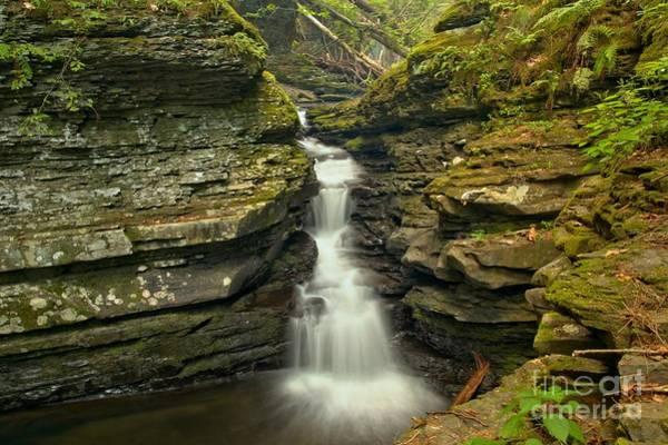 Photograph - Adams Creek Falls Landscape by Adam Jewell