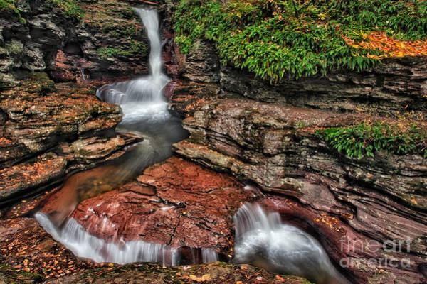 Photograph - Adam's Waterfall  by Susan Candelario