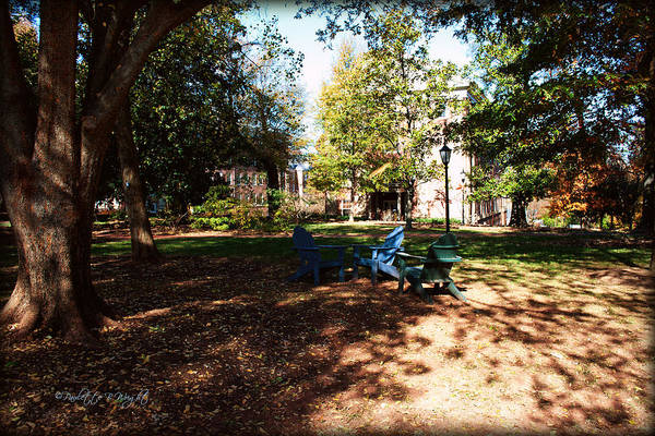 Photograph - Adirondack Chairs 5 - Davidson College by Paulette B Wright