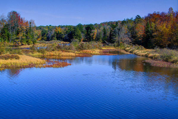 Chain Of Lakes Photograph - Adirondack Color Vii by David Patterson