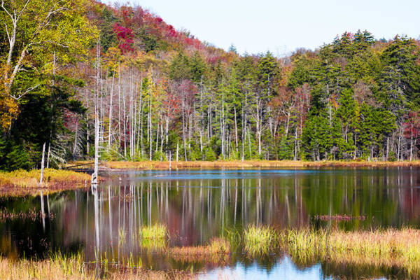 Fulton Chain Of Lakes Photograph - Adirondack Color Viii by David Patterson