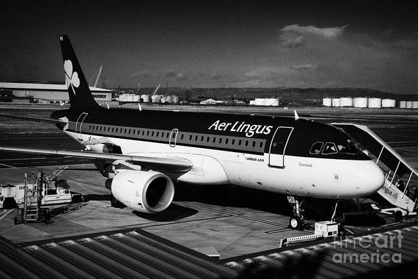 George Best Wall Art - Photograph - aer lingus airbus A319 Conlaed at George Best Belfast City Airport UK by Joe Fox