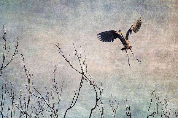 Aerial Dance Art Print