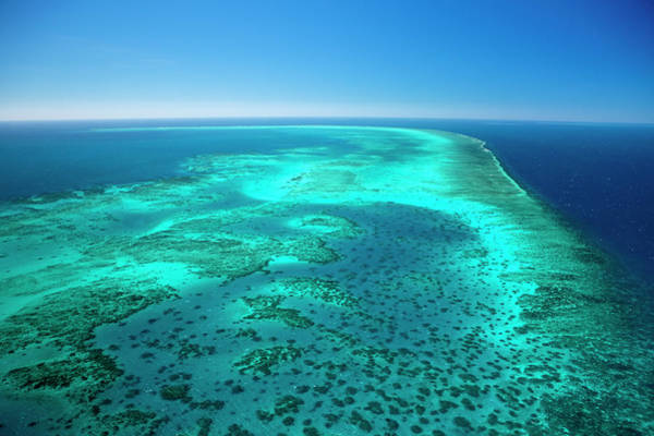 Reef Photograph - Aerial Of Arlington Reef In The Great by Andrew Watson