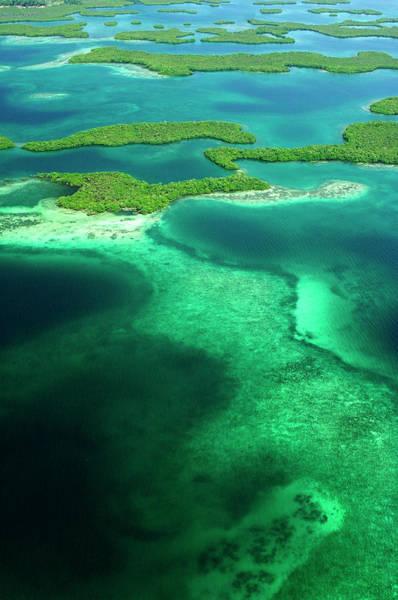 Wall Art - Photograph - Aerial Of Mangrove Islands, Bastimentos by Alfredo  Maiquez