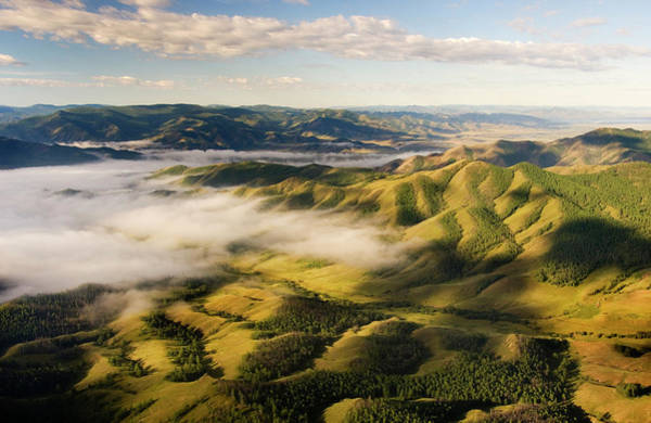 Trees In Fog Photograph - Aerial Selenge River Drainage, Mongolia by Ted Wood