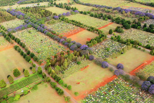 Aerial View Of A Graveyard And Art Print
