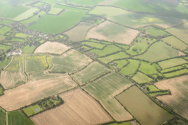 Cultivate Photograph - Aerial View Of Cultivated Land In London by Franckreporter