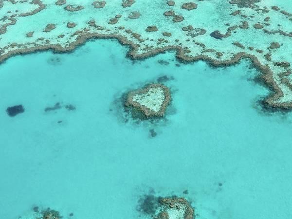 Reef Photograph - Aerial View Of Great Barrier Reef by Neil Baldwin / Eyeem
